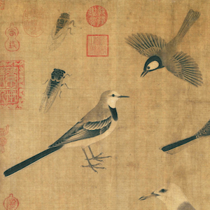 Taxonomy of Empire: The Compendium of Birds as an Epistemic and Ecological Representation of Qing China