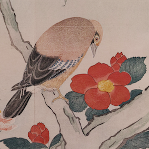 Mediated Realism in Kuwagata Keisai's Illustrated Book of Birds from Abroad