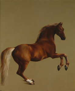 Fig. 3. George Stubbs, Whistlejacket, oil on canvas, 1762. National Gallery, London. Image: Wikimedia Commons.